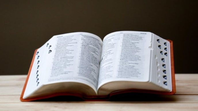 dizionario hr